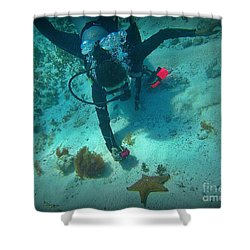 The Star Of The Scene Shower Curtain by Halifax Photography John Malone