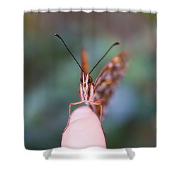 Shower Curtain featuring the photograph The Staring Contest by Priya Ghose