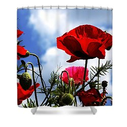 The Summer Poppy Shower Curtain by Baggieoldboy