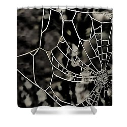 The Tangled Web Shower Curtain by Sheila Laurens