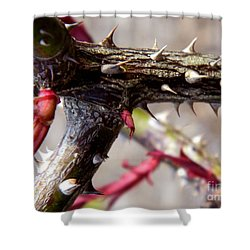 The Thorns Of Life Shower Curtain by Andrea Anderegg