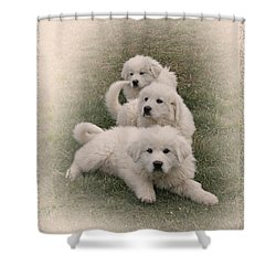 The Three Shower Curtain