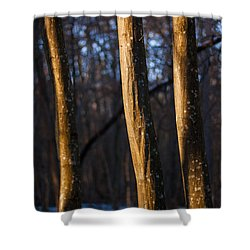 Shower Curtain featuring the photograph The Three Graces by Davorin Mance