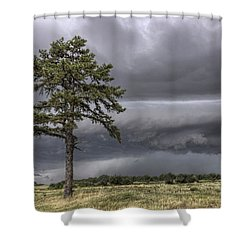 The Thunder Rolls - Storm - Pine Tree Shower Curtain