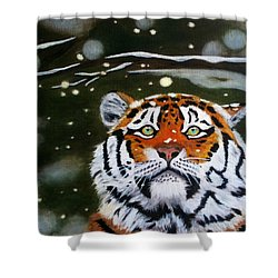 The Tiger In Winter Shower Curtain