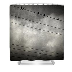 The Trace 11.24 Shower Curtain by Taylan Apukovska