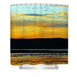 The Travelers  Shower Curtain