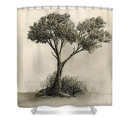 The Tree Quietly Stood Alone Shower Curtain by Audra D Lemke