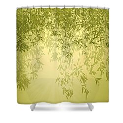 Shower Curtain featuring the photograph The Trees First Light by Holly Kempe