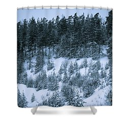 The Trees Of The Snowy Hill Shower Curtain