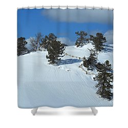 Shower Curtain featuring the photograph The Trees Take A Snow Day by Michele Myers