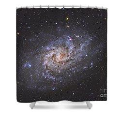 The Triangulum Galaxy Shower Curtain by Reinhold Wittich