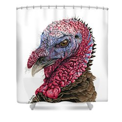 The Turkey Shower Curtain by Sarah Batalka