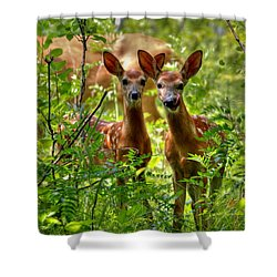 The Twins Shower Curtain by Larry Trupp