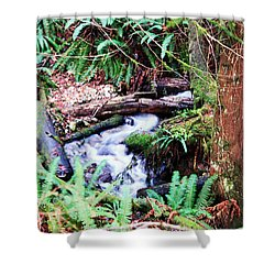 The Unknown Creek Shower Curtain