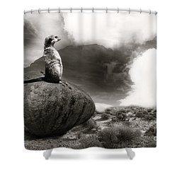 Shower Curtain featuring the photograph The View by Christine Sponchia