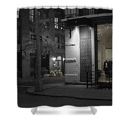 The Village Always New Shower Curtain