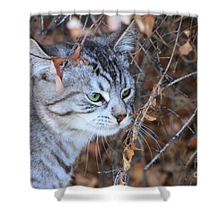 The Visitor Shower Curtain by Alyce Taylor