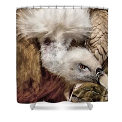 The Vulture Shower Curtain by Ernie Echols