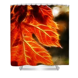 The Warmth Of Fall Shower Curtain