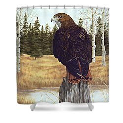 The Watchful Eye Shower Curtain