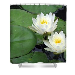 Shower Curtain featuring the photograph The Water Lilies Collection - 06 by Pamela Critchlow