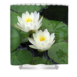 Shower Curtain featuring the photograph The Water Lilies Collection - 07 by Pamela Critchlow