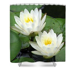 Shower Curtain featuring the photograph The Water Lilies Collection - 08 by Pamela Critchlow