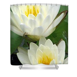 Shower Curtain featuring the photograph The Water Lilies Collection - 09 by Pamela Critchlow