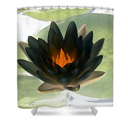 Shower Curtain featuring the photograph The Water Lilies Collection - Photopower 1037 by Pamela Critchlow