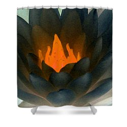 Shower Curtain featuring the photograph The Water Lilies Collection - Photopower 1038 by Pamela Critchlow