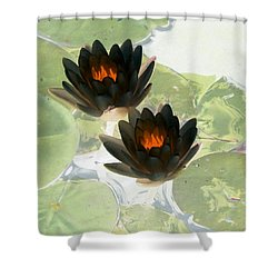 Shower Curtain featuring the photograph The Water Lilies Collection - Photopower 1040 by Pamela Critchlow