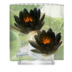 Shower Curtain featuring the photograph The Water Lilies Collection - Photopower 1041 by Pamela Critchlow
