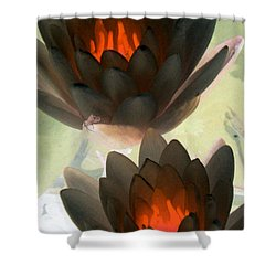 Shower Curtain featuring the photograph The Water Lilies Collection - Photopower 1042 by Pamela Critchlow