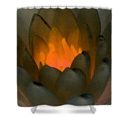 Shower Curtain featuring the photograph The Water Lilies Collection - Photopower 1043 by Pamela Critchlow