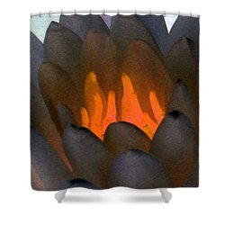 Shower Curtain featuring the photograph The Water Lilies Collection - Photopower 1044 by Pamela Critchlow