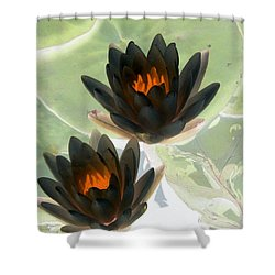 Shower Curtain featuring the photograph The Water Lilies Collection - Photopower 1046 by Pamela Critchlow