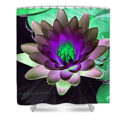 Shower Curtain featuring the photograph The Water Lilies Collection - Photopower 1114 by Pamela Critchlow