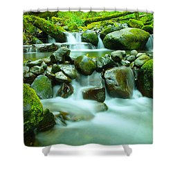 The Way Of Healing Water  Shower Curtain