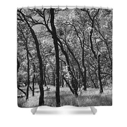 The Way You Move Me Shower Curtain by Laurie Search