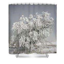 The Weight Of Winter Shower Curtain by John Haldane