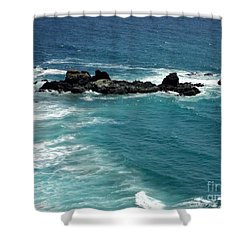The Whale Rock Shower Curtain by Carla Carson
