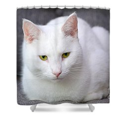 The White Beauty Shower Curtain by Tine Nordbred