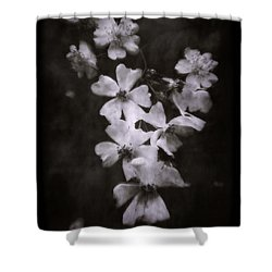 The Wild Roses Shower Curtain by Louise Kumpf