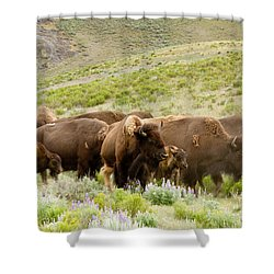 The Wild West Shower Curtain by Bill Gallagher