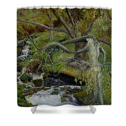 The Willow Woman Washing Her Hair Shower Curtain