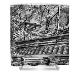 The Winding Stairs Shower Curtain by Howard Salmon