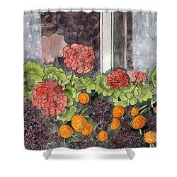 Floral Prints, Flower Prints, Flower Painting, The Window Box Shower Curtain