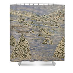 The Winter Heart Shower Curtain by Felicia Tica
