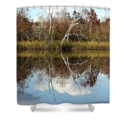 Shower Curtain featuring the photograph The Winter Tree by Debra Forand